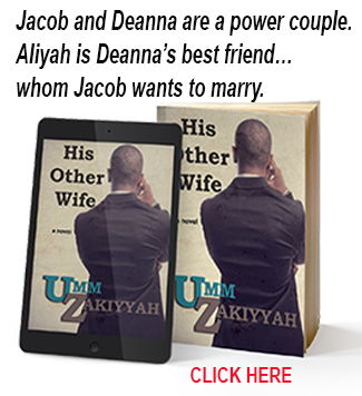His Other Wife novel