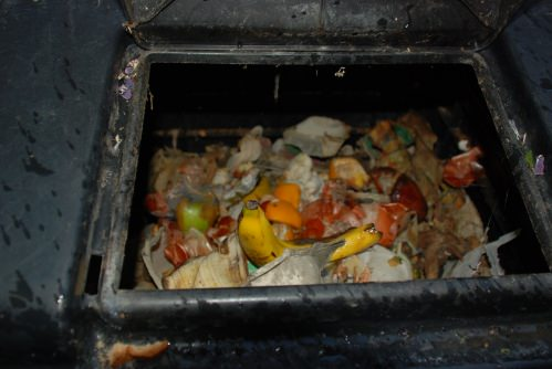 This is where the kitchen scraps go- you can cut it into smaller pieces to compost faster
