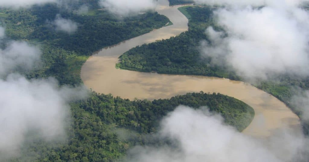 Darien forest of Panama from overhead