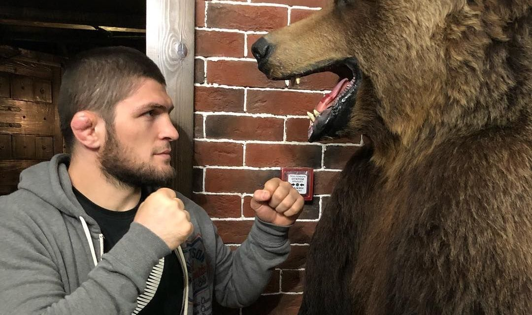 Undisputed And Undefeated 13 Ways Khabib Nurmagomedov Inspired Us To Win With Faith Muslimmatters Org